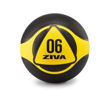 Ziva Medicine Balls