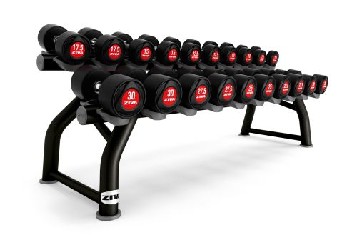SL 10 Pair Horizontal Dumbbell Rack - black
