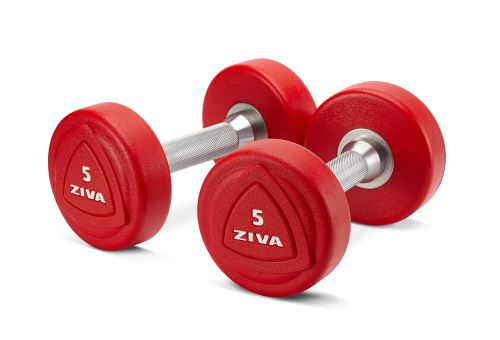 ZVO 1-10kg Solid Steel Urethane Dumbbell Set-red
