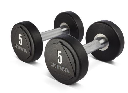 ZVO Solid Steel Urethane Dumbbells